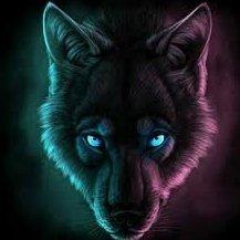 darkwolf709